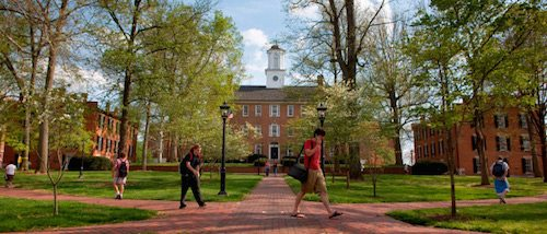 Top 50 Best Value Online Rn To Bsn Programs Value Colleges