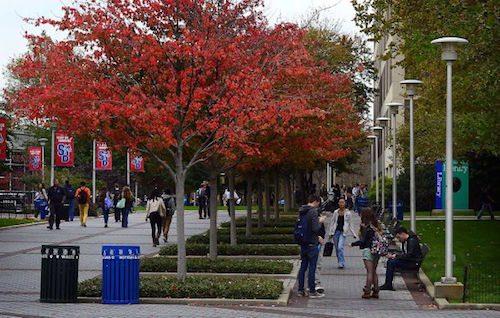 Stony brook university tuition and fees-3614
