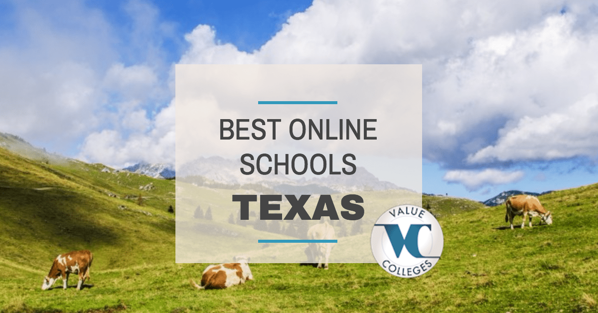 texas state universities with online degree programs