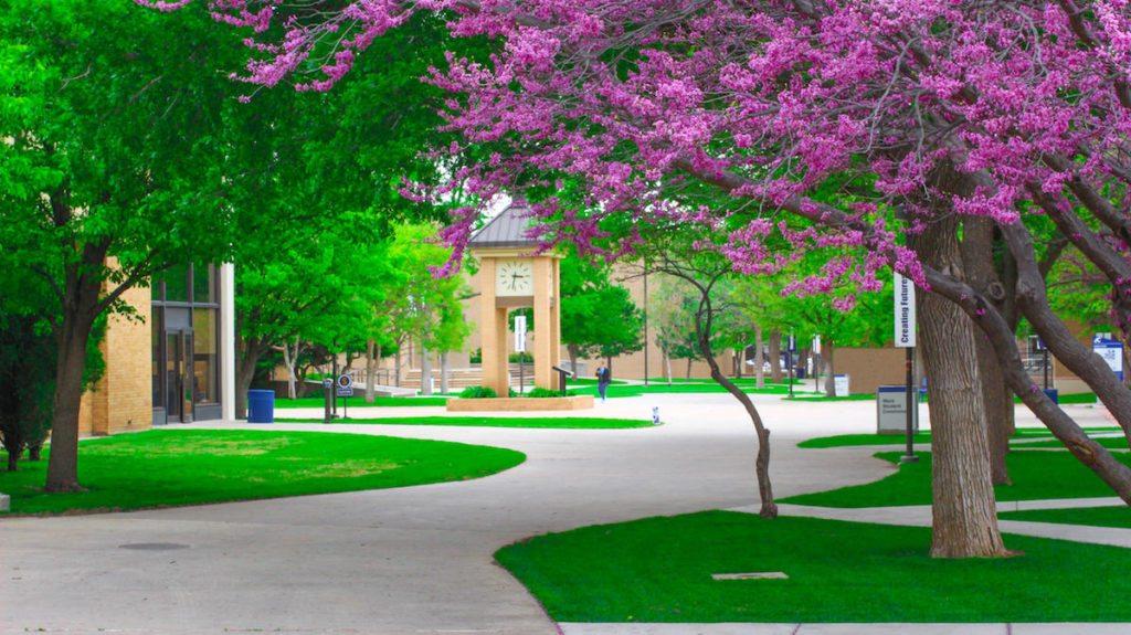 Amarillo College, a community college in Texas